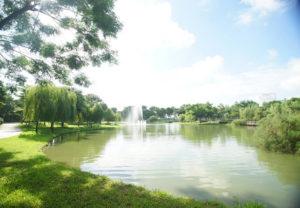 view-cong-vien-hanoi-homeland